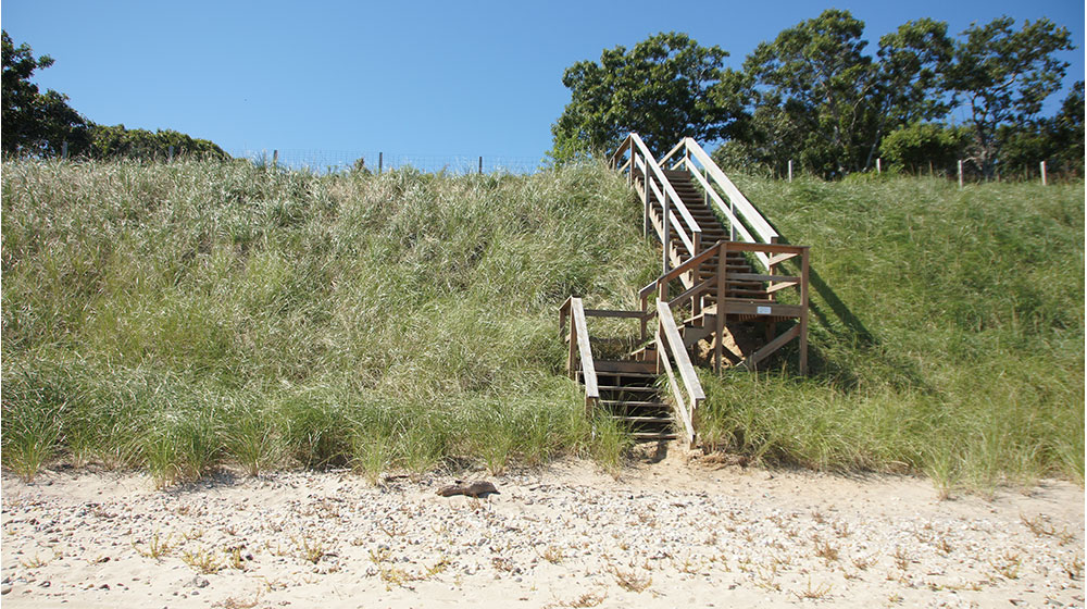 Stairs-Bluff-4