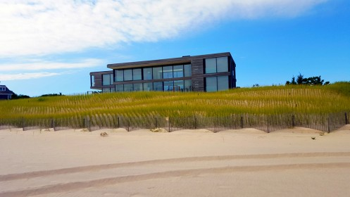 first coastal dune restoration featured image
