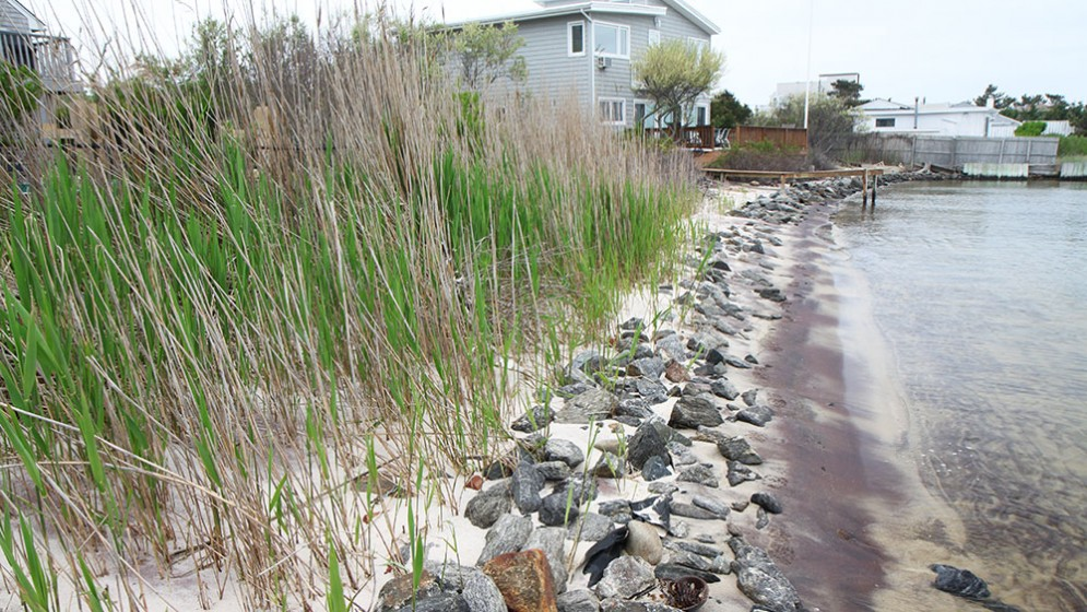 firstcoastal-living-shorelines-13