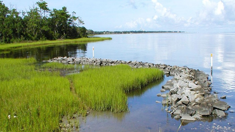 firstcoastal-living-shorelines-18