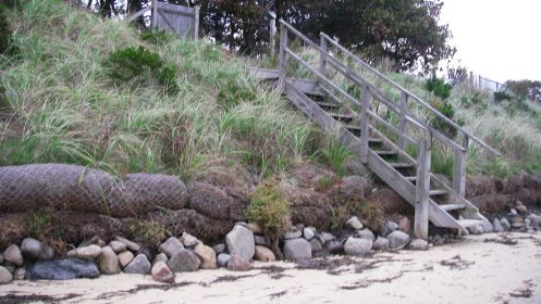 first coastal living shorelines featured image